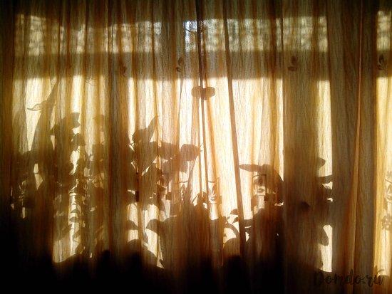 zashtorennoe-okno