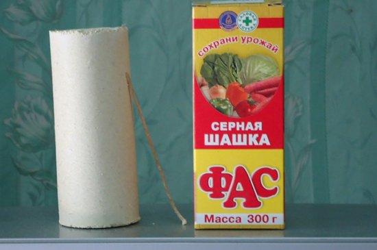 sernaya-shashka-fas